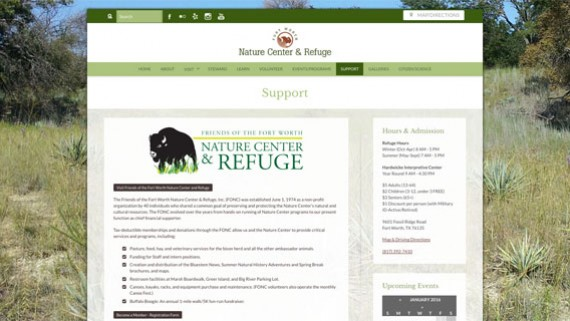 Fort Worth Non-profit Website